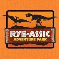 Rye-Assic Adventure Playground and Softplay