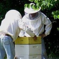 Lowcountry Beekeepers Assoc.