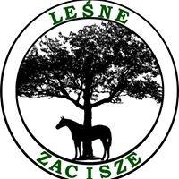 Gospodarstwo Agroturystyczne Leśne Zacisze