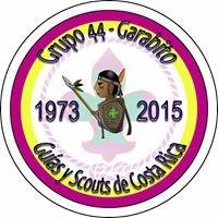 Grupo Guías y Scouts 44