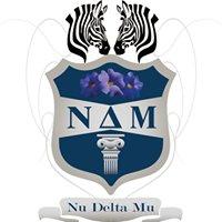 NΔM - Nu Delta Mu