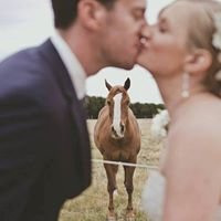 Hedge Farm - weddings, functions and accommodation