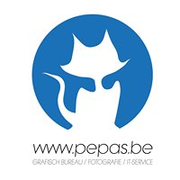 Pepas - See, Feel and Create