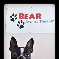 Bear Sports Therapy