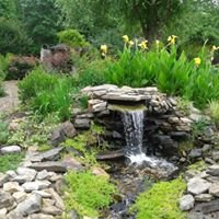 Carroll County Master Gardeners