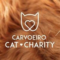 Carvoeiro Cat Charity