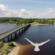 Naas Aerial Photography