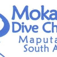 Mokarran Dive Charters Rocktail Bay