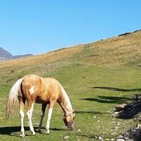 Cavalli&Passioni-Bielmonte