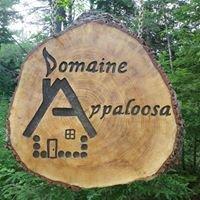Domaine Appaloosa -Québec