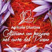 Agricola Giustina