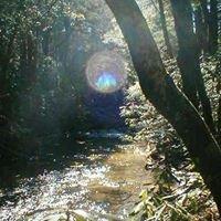 Hemlock Hideaway