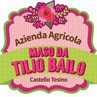 Azienda Agricola - Fattoria Didattica Maso da Tilio Bailo