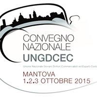 Unione Giovani Dottori Commercialisti ed Esperti Contabili di Mantova
