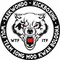 Wolf Team Emilia Romagna Taekwondo & Kickboxing