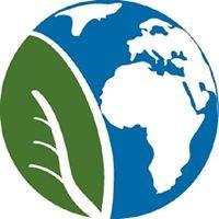 Hadley Environmental Services