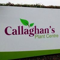 Callaghan Nurseries & Garden Centre Donadea
