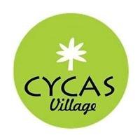 Cycas Village