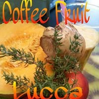 Coffee Fruit Lucca