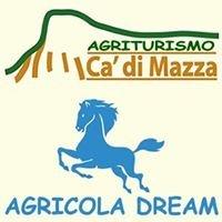 AGRICOLA DREAM Agriturismo Allevamento Cavalli
