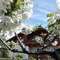 Friedlerhof - Toblach / Dobbiaco