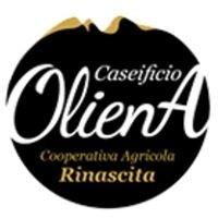 Caseificio Oliena