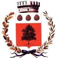 COMUNE DI BEDOLLO