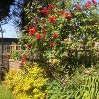 Mums Back Garden