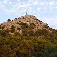 Monte Pellegrino .com