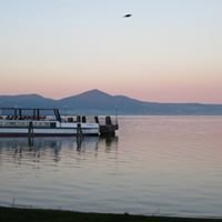 Consorzio Lago Di Bracciano