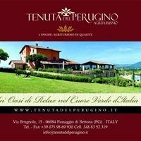 Tenuta Del Perugino
