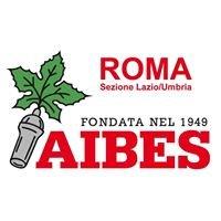 Aibes Roma Sez Lazio-Umbria