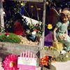 Once upon a Fairy Garden