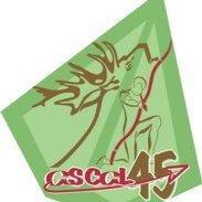 Ascal45 Association Sportive Chasseurs à l'Arc du Loiret