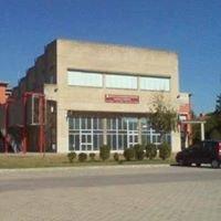 Liceo Scientifico A. Pesenti