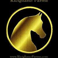 Ricigliano Farms