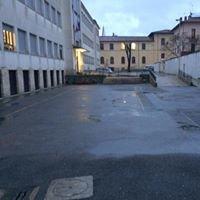 Scuola media A. Cesalpino