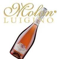 Vini Molon - Venezia