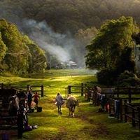 Hidden Valley Horse Riding