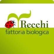 Fattoria Biologica Recchi