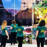 EDNA Tour & Travel Agency