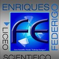 "Liceo Scientifico Statale ""F. Enriques"""