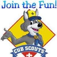 Newbridge Cub Scouts