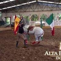 Alta Escuela Domecq - Centro Cultural Ecuestre