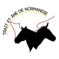 Trait et Âne de Normandie