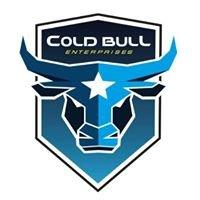 COLD BULL Enterprises - Trockeneisstrahlen