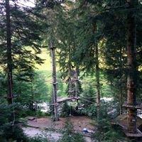 Waldklettergarten Enzklösterle