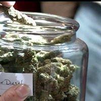 Cannabis-weed shop 678 671 9841