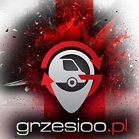 Grzesioo.pl - Przewozy Polska Anglia