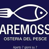MARE MOSSO - Osteria Del Pesce